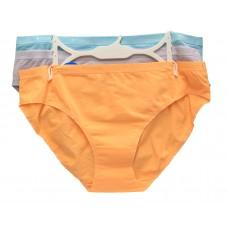 Columbia Four-Way Stretch Bikini 3-Pack Necture/Twilight/Clear Blue LG